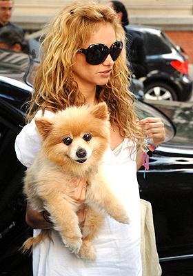 paulina rubio y su perrito