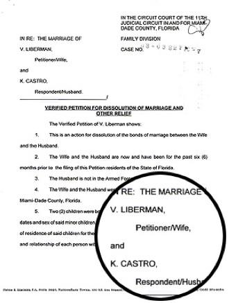 Demanda Divorcio Cristian Castro