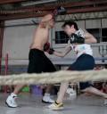 Camaleones pelea de Pee Wee