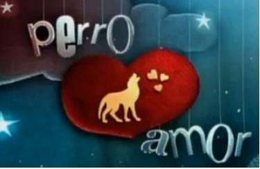 Perro Amor por galavisión a partir del 26 de Abril
