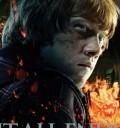 Ron Poster Harry Potter y las Reliquias de la muerte II.