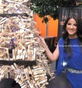 Maite Perroni colabora con Torre de palitos de paleta