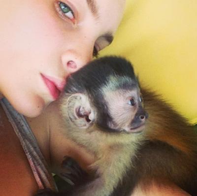 El mono de Belinda