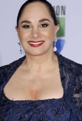 Susana Dosamantes regresa a las telenovelas en México