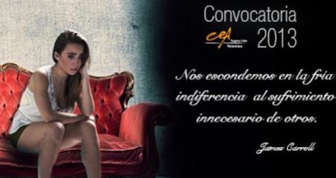Cea Convocatoria 2013