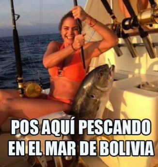 Memes de Lucero y Bolivia
