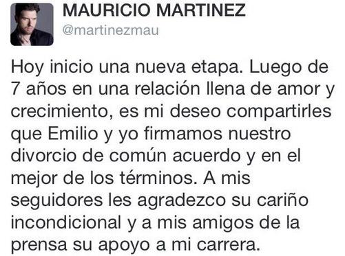 Mensaje de Mauricio Martínez por su divorcio